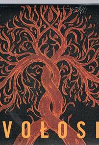 Vołosi, pierwszy album